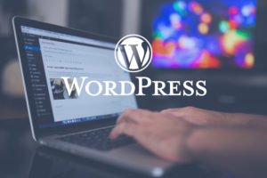 Le combo WordPress idéal (OceanWP et extensions)
